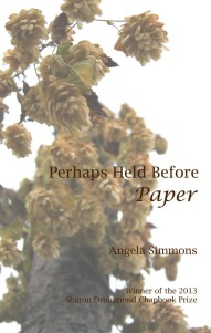 Perhaps Held Before Paper cover